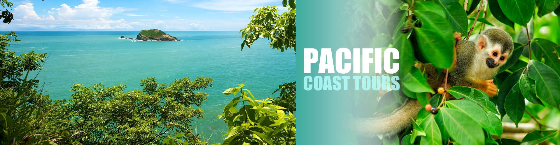 Pacific Coast Tours