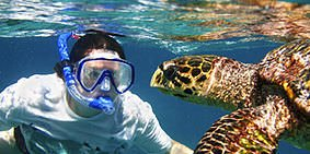 Cahuita Boat Snorkel Hiking Trip 1 - Puerto Viejo - Cahuita