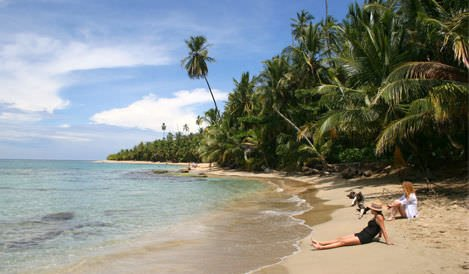Caribbean Coast Explorer Image - The Road Less Traveled