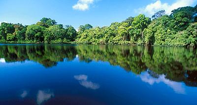 Day 3 Parque Nacional Tortuguero - Caribbean Wet & Wild Package