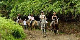 Horseback Riding Manuel Antonio 1 - Manuel Antonio