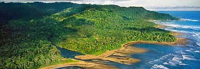 Peninsula de Osa Costa Rica - Expedition Osa Packages