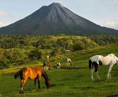 Pristine Green and Arenal Volcano 1 - Pristine Green & Arenal Volcano Package