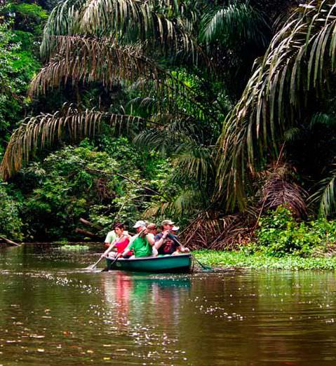Tortuguero Eco Adventure Traveler Slide 4 - Tortuguero Eco & Adventure Traveler