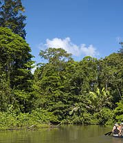 Tortuguero North East - DESTINATIONS