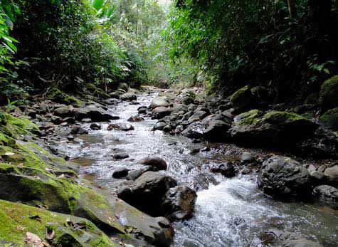 Uatsi Waterfall and Indigenous Reservation - Uatsi Waterfall and Indigenous Reservation