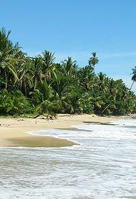 Caribbean Coast Explorer