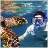 actv Snorkeling copy - Trip Planner Agency