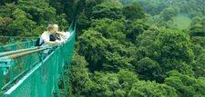 Hotel Monteverde - HOTELS