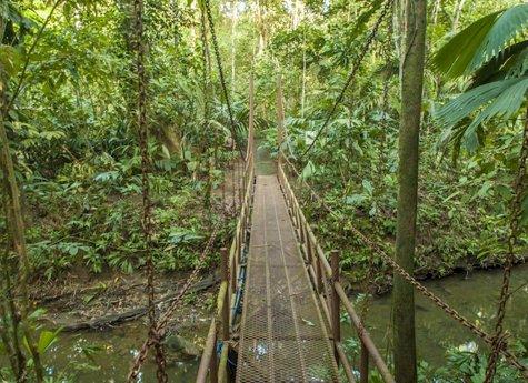 La Ceiba Tour 2 - La Ceiba Reserve - Day Tour