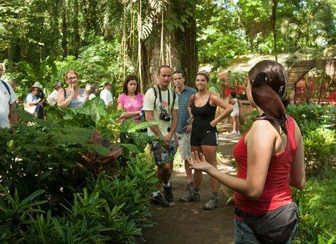 La Ceiba Tour 3 - La Ceiba Reserve - Day Tour