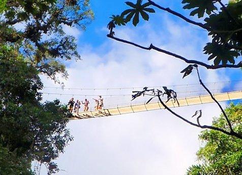 Arenal Hanging Bridges 02 - Arenal Hanging Bridges Walking