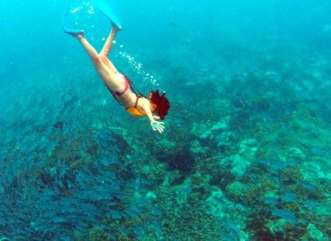 Caño Island 01 - Caño Island Snorkeling