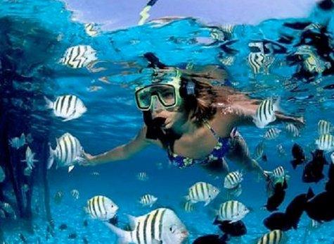 Caño Island 04 - Caño Island Snorkeling