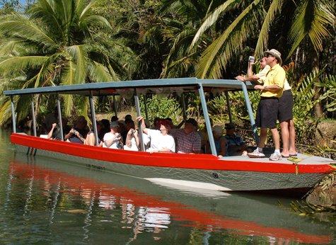 Damas Mangrove 01 - Damas Mangrove Boat Tour