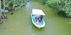 Damas Mangrove Boat - Manuel Antonio