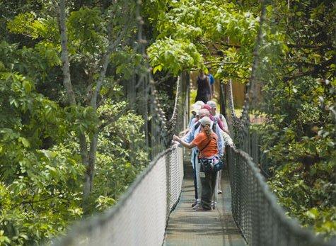 Parque San Luis 04 - Canopy & Zipline at Parque de Aventura San Luis