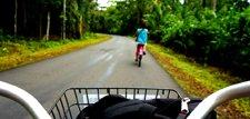Banana Bikes - TRANSPORTATION