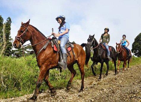 Horseback Ride A - Horseback Ride in the Clouds of Monteverde