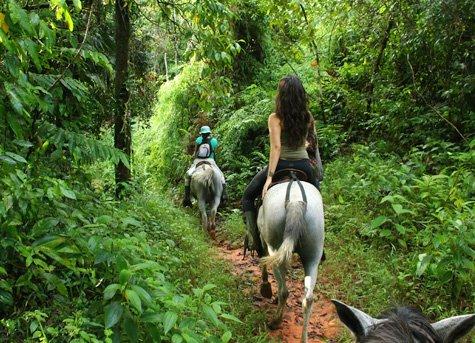 Horseback Ride B - Horseback Ride in the Clouds of Monteverde