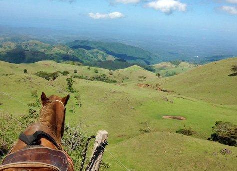 Horseback Ride C - Horseback Ride in the Clouds of Monteverde