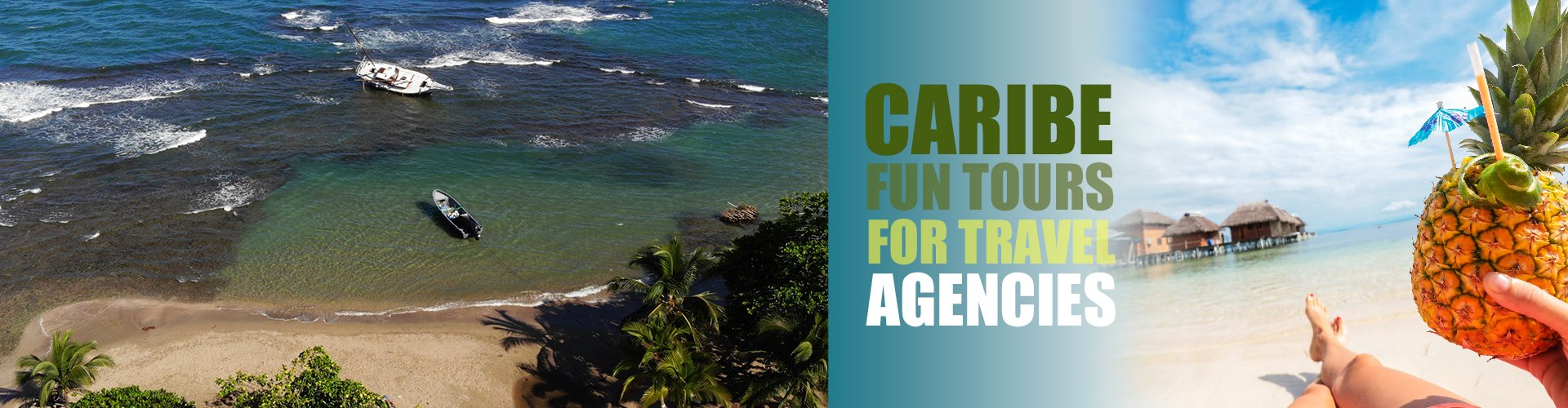 Travel Agency Partnerships