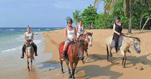 CFT Horseback - Caribbean Tours
