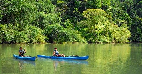 CFT Tortuguero Canal - Caribbean Tours