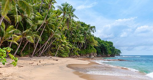 CFT caribbean tours - Tours