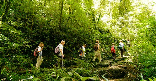 CFT Guided Hike Monteverde - Arenal / Monteverde
