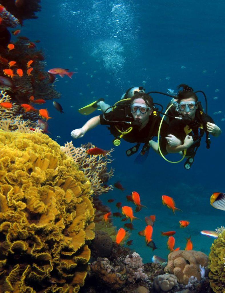 scuba diving costa rica