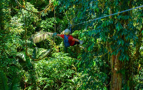 Canopy plataforma - Caribe Scenic Flights