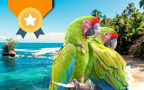 Manzanillo Trail Top - Caribbean Tours